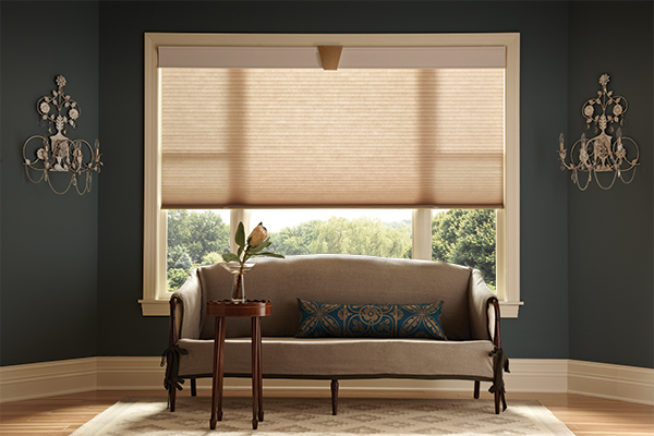 window treatment experts window treatment installation